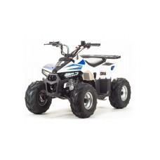 ATV 110 EAGLE